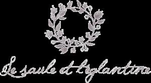 L'attribut alt de cette image est vide, son nom de fichier est le-saule-et-leglantine_logo-4-300x166.png.